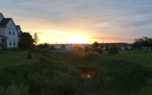 A run with the sunrise. 116/365