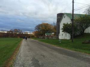 Mandatory barn picture