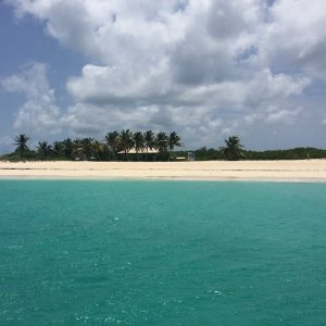 Welcome to Prickly Pear Island!